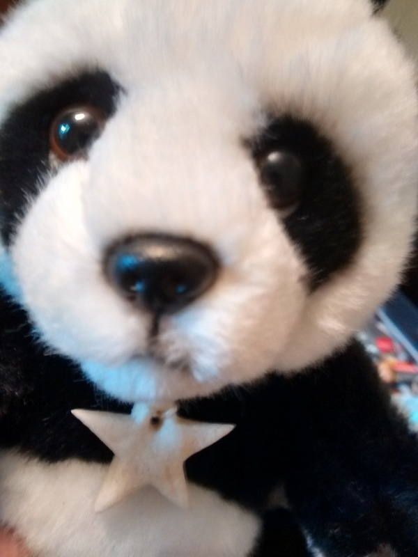 Slfie of Star Panda with her new necklace #Passthe Panda