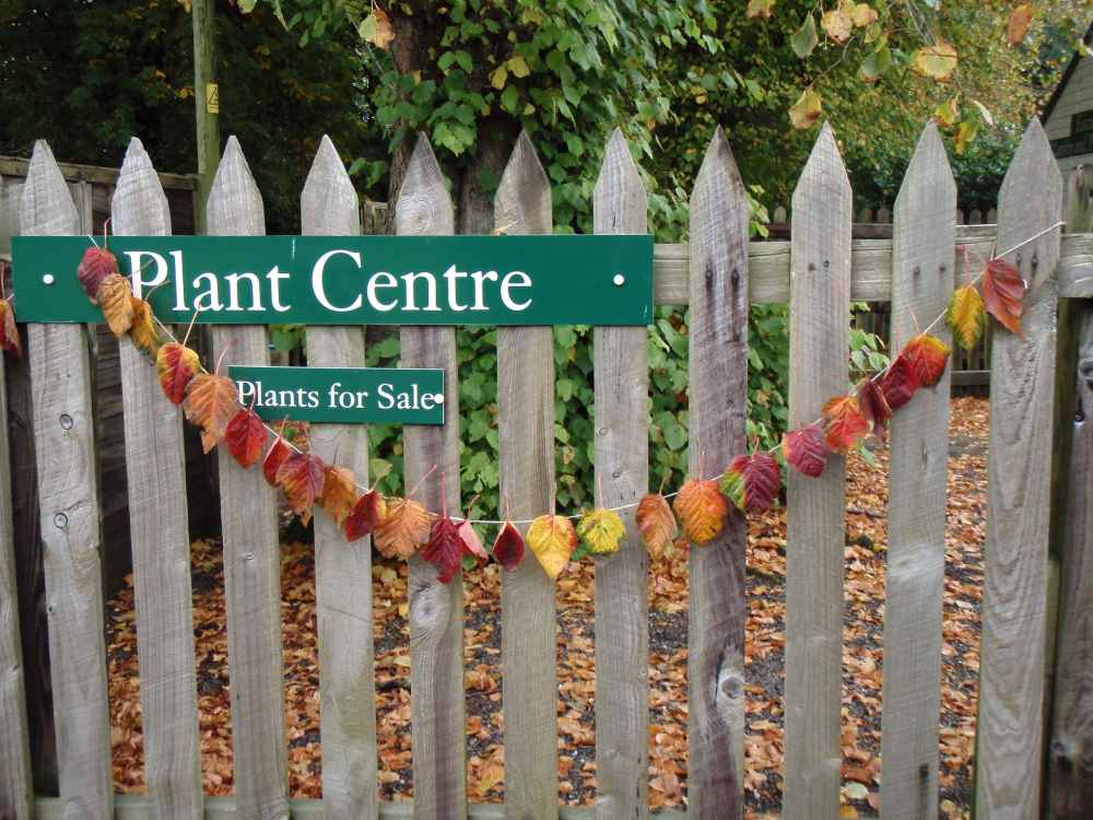 There are so many different things the Ranger can help you create from leaves like this Autumn leaf bunting
