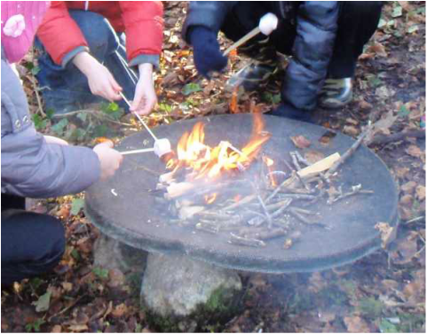 Children cooking marshmallows over a small fire